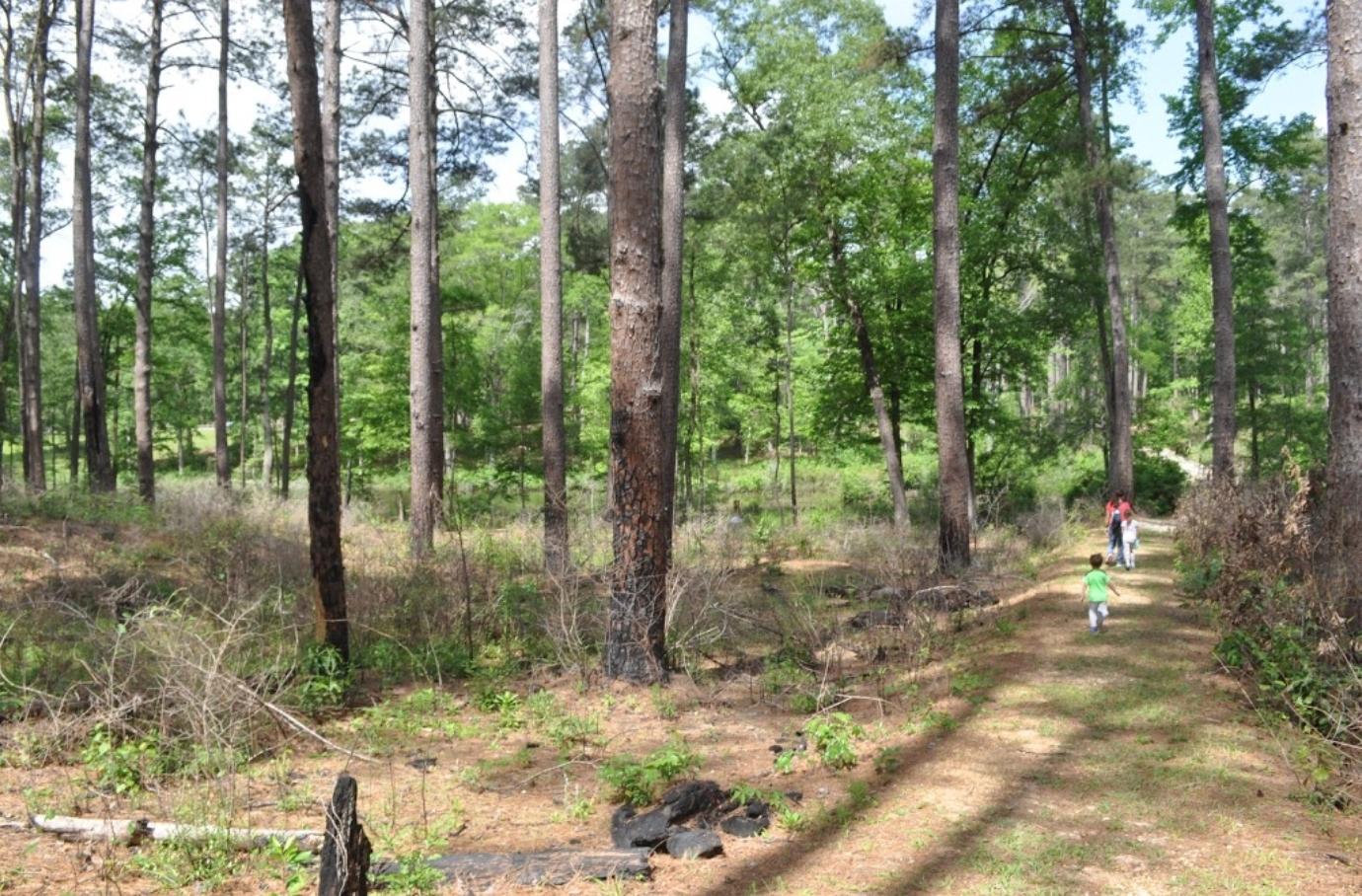 Fullerton Lake Campground